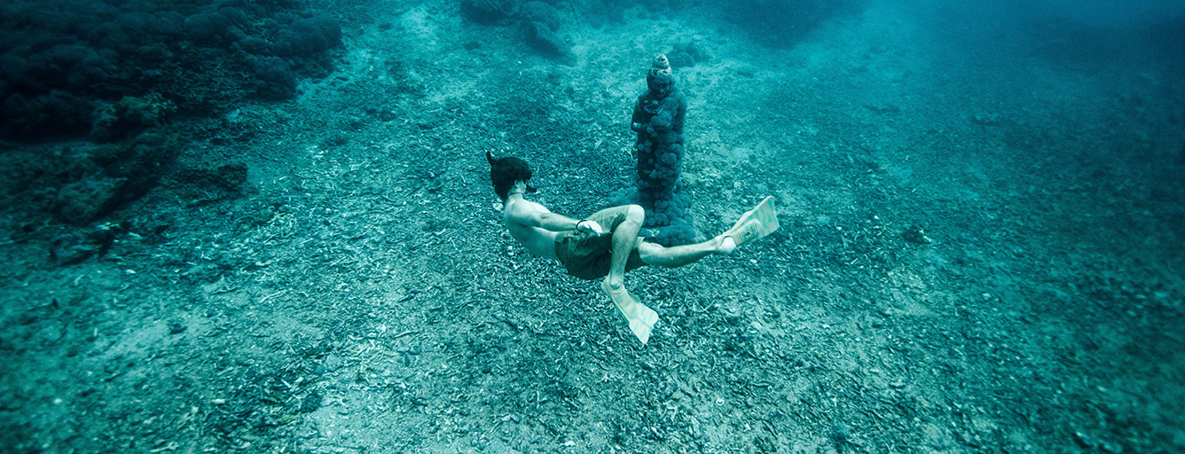 Baracuda Deep Sea Diving